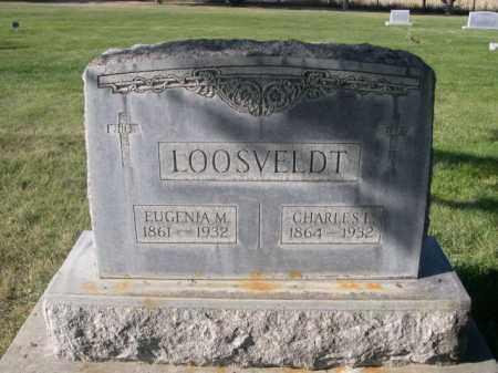 LOOSVELDT, CHARLES L. - Sheridan County, Nebraska | CHARLES L. LOOSVELDT - Nebraska Gravestone Photos