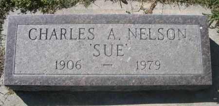 "NELSON, CHARLES A. ""SUE"" - Sheridan County, Nebraska | CHARLES A. ""SUE"" NELSON - Nebraska Gravestone Photos"