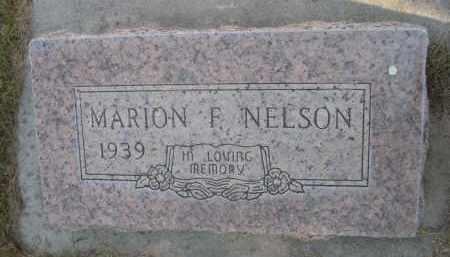 NELSON, MARION F. - Sheridan County, Nebraska   MARION F. NELSON - Nebraska Gravestone Photos