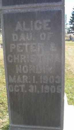 NORDIN, ALICE - Sheridan County, Nebraska | ALICE NORDIN - Nebraska Gravestone Photos