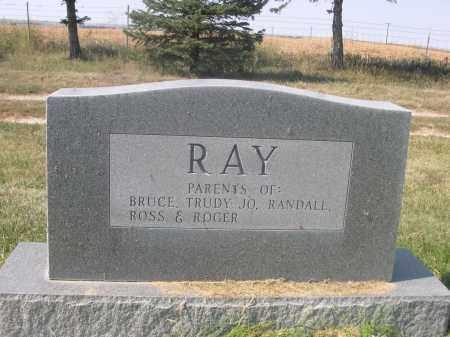 RAY, LEOTA - Sheridan County, Nebraska | LEOTA RAY - Nebraska Gravestone Photos