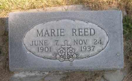 REED, MARIE - Sheridan County, Nebraska | MARIE REED - Nebraska Gravestone Photos