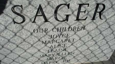 SAGER, HARRY E. - Sheridan County, Nebraska | HARRY E. SAGER - Nebraska Gravestone Photos