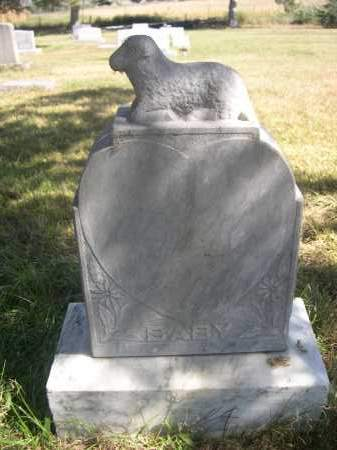 SCHILDHAUER, BABY - Sheridan County, Nebraska | BABY SCHILDHAUER - Nebraska Gravestone Photos