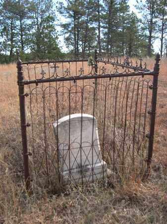 SCHMIDT, BILLY BOY - Sheridan County, Nebraska | BILLY BOY SCHMIDT - Nebraska Gravestone Photos
