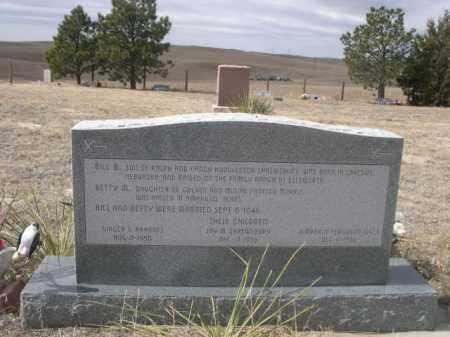 SHREWSBURY, BILL B. - Sheridan County, Nebraska | BILL B. SHREWSBURY - Nebraska Gravestone Photos