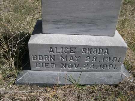 SKODA, ALICE - Sheridan County, Nebraska | ALICE SKODA - Nebraska Gravestone Photos
