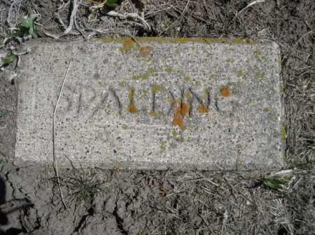 SPALDING, PLOT - Sheridan County, Nebraska | PLOT SPALDING - Nebraska Gravestone Photos