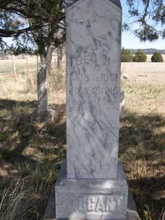 TAGGART, BEN H. - Sheridan County, Nebraska | BEN H. TAGGART - Nebraska Gravestone Photos