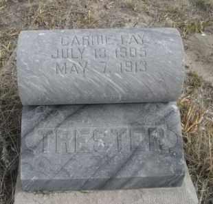 TRESTER, CARRIE FAY - Sheridan County, Nebraska | CARRIE FAY TRESTER - Nebraska Gravestone Photos