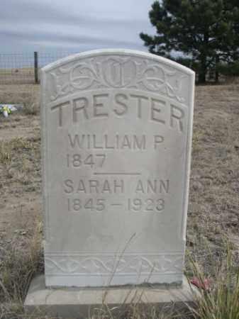 TRESTER, SARAH ANN - Sheridan County, Nebraska | SARAH ANN TRESTER - Nebraska Gravestone Photos