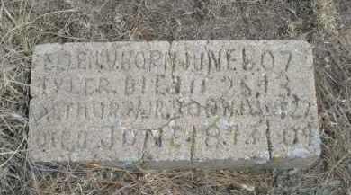TYLER, ELLEN V. - Sheridan County, Nebraska   ELLEN V. TYLER - Nebraska Gravestone Photos