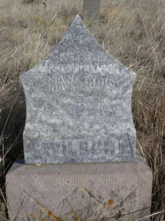 WILSON, ELLA FRANCES - Sheridan County, Nebraska | ELLA FRANCES WILSON - Nebraska Gravestone Photos