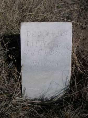 WILSON, LITTLE INFANTS OF J.E. & DORA L. - Sheridan County, Nebraska | LITTLE INFANTS OF J.E. & DORA L. WILSON - Nebraska Gravestone Photos