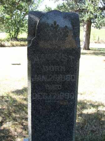 POLENZ, AUGUST - Sherman County, Nebraska | AUGUST POLENZ - Nebraska Gravestone Photos