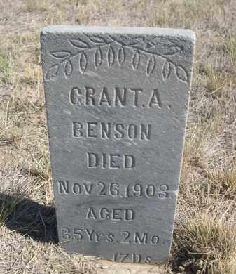 BENSON, GRANT A. - Sioux County, Nebraska | GRANT A. BENSON - Nebraska Gravestone Photos