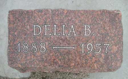 BIXLER, DELIA B. - Sioux County, Nebraska | DELIA B. BIXLER - Nebraska Gravestone Photos