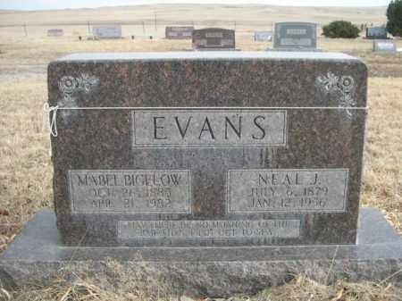 EVANS, NEAL J. - Sioux County, Nebraska | NEAL J. EVANS - Nebraska Gravestone Photos