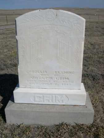FLEMING GRIM, CORDELIA - Sioux County, Nebraska | CORDELIA FLEMING GRIM - Nebraska Gravestone Photos