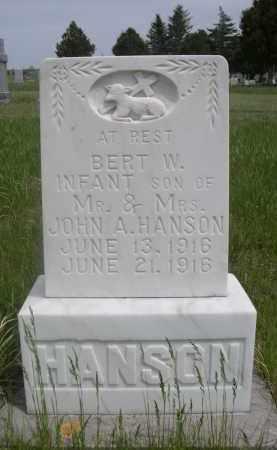 HANSON, BERT W. - Sioux County, Nebraska | BERT W. HANSON - Nebraska Gravestone Photos