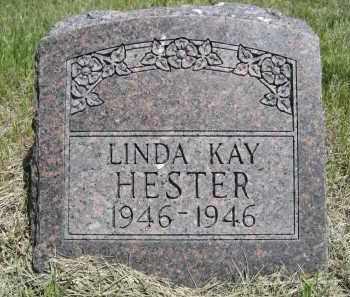 HESTER, LINDA KAY - Sioux County, Nebraska   LINDA KAY HESTER - Nebraska Gravestone Photos