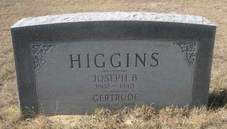 HIGGINS, GERTRUDE - Sioux County, Nebraska | GERTRUDE HIGGINS - Nebraska Gravestone Photos