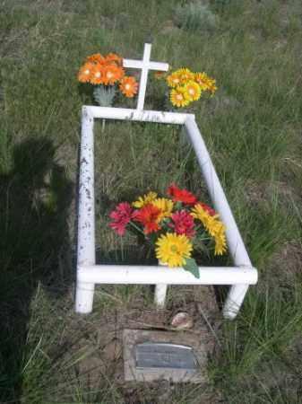 HILL, BABY - Sioux County, Nebraska | BABY HILL - Nebraska Gravestone Photos
