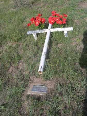 JENKINS, BABY - Sioux County, Nebraska | BABY JENKINS - Nebraska Gravestone Photos