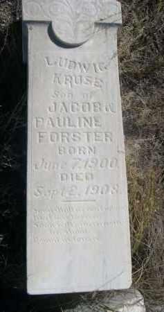 FORSTER, LUDWIC KRUSE - Sioux County, Nebraska   LUDWIC KRUSE FORSTER - Nebraska Gravestone Photos