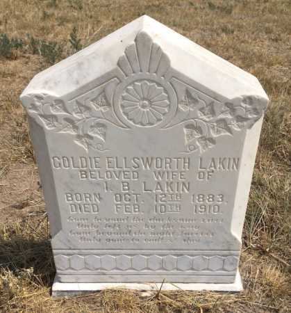 ELLSWORTH LAKIN, GOLDIE - Sioux County, Nebraska | GOLDIE ELLSWORTH LAKIN - Nebraska Gravestone Photos