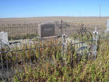 MENG, FAMILY PLOT - Sioux County, Nebraska | FAMILY PLOT MENG - Nebraska Gravestone Photos