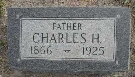 NEWMAN, CHARLES H. - Sioux County, Nebraska | CHARLES H. NEWMAN - Nebraska Gravestone Photos