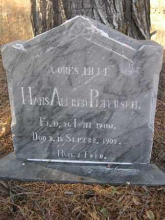 PETERSEN, HANS ALFRED - Sioux County, Nebraska | HANS ALFRED PETERSEN - Nebraska Gravestone Photos