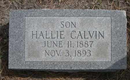 PHINNEY, HALLIE CALVIN - Sioux County, Nebraska | HALLIE CALVIN PHINNEY - Nebraska Gravestone Photos