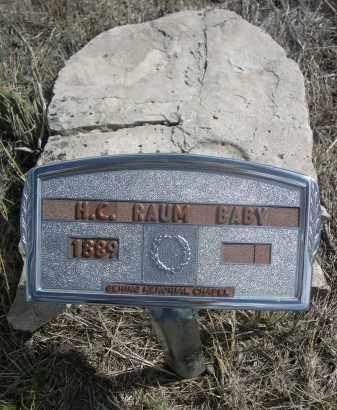 RAUM, H. C. - Sioux County, Nebraska | H. C. RAUM - Nebraska Gravestone Photos