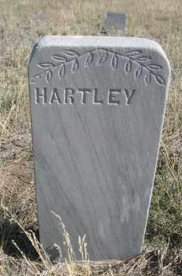 SAXTON, HARTLEY - Sioux County, Nebraska | HARTLEY SAXTON - Nebraska Gravestone Photos