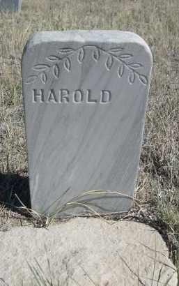 SAXTON, HAROLD - Sioux County, Nebraska | HAROLD SAXTON - Nebraska Gravestone Photos