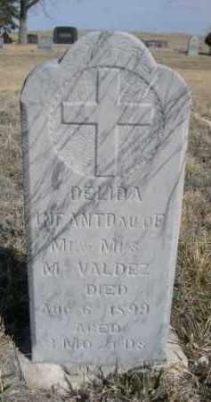 VALDEZ, DELIDA - Sioux County, Nebraska | DELIDA VALDEZ - Nebraska Gravestone Photos