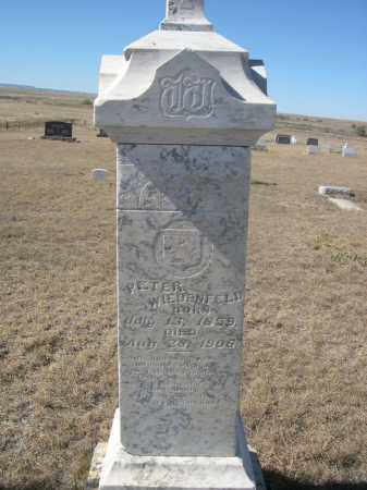 WIEDENFELD, PETER - Sioux County, Nebraska | PETER WIEDENFELD - Nebraska Gravestone Photos
