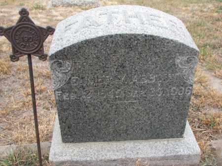 ABBOTT, ELMER Y. - Stanton County, Nebraska | ELMER Y. ABBOTT - Nebraska Gravestone Photos