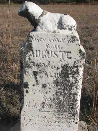 ALBERT, AUGUSTE - Stanton County, Nebraska | AUGUSTE ALBERT - Nebraska Gravestone Photos