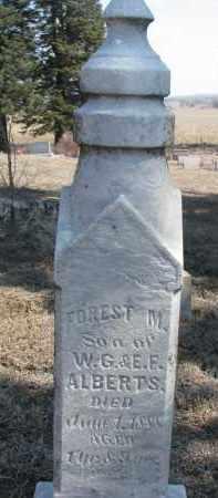 ALBERT, FOREST M. - Stanton County, Nebraska | FOREST M. ALBERT - Nebraska Gravestone Photos