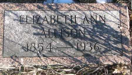 ALLISON, ELIZABETH ANN - Stanton County, Nebraska   ELIZABETH ANN ALLISON - Nebraska Gravestone Photos