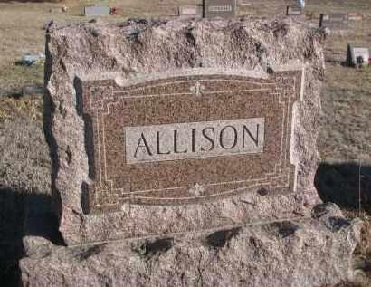 ALLISON, PLOT STONE - Stanton County, Nebraska | PLOT STONE ALLISON - Nebraska Gravestone Photos