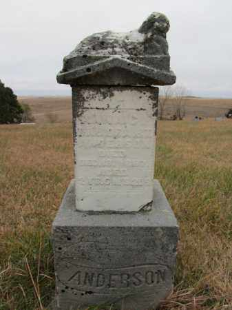ANDERSON, ANNA C. - Stanton County, Nebraska | ANNA C. ANDERSON - Nebraska Gravestone Photos