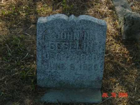 BESELIN, JOHN H. - Stanton County, Nebraska | JOHN H. BESELIN - Nebraska Gravestone Photos