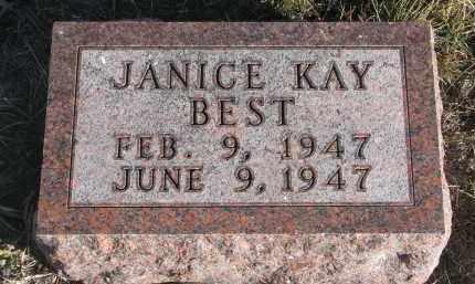 BEST, JANICE KAY - Stanton County, Nebraska | JANICE KAY BEST - Nebraska Gravestone Photos