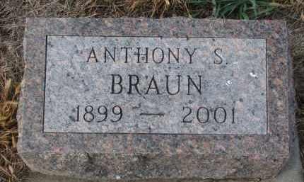 BRAUN, ANTHONY S. - Stanton County, Nebraska | ANTHONY S. BRAUN - Nebraska Gravestone Photos