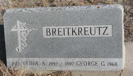 BREITKREUTZ, GEORGE G. - Stanton County, Nebraska   GEORGE G. BREITKREUTZ - Nebraska Gravestone Photos