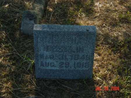 BRESELIN, BERTHA - Stanton County, Nebraska | BERTHA BRESELIN - Nebraska Gravestone Photos